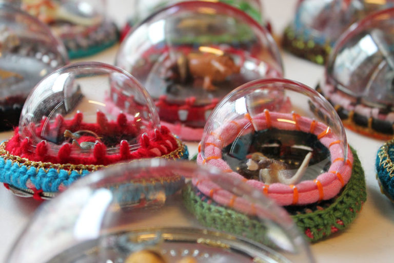 Hybrid Mutation Mixed-Race Toys